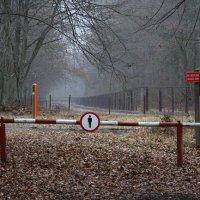 Belarussian Border By Tomek Jezierczuk