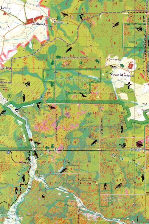 Białowieża Forest Map