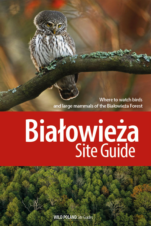 Białowieża Site Guide front cover