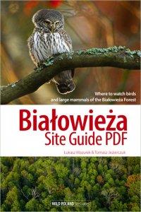 Białowieża Site Guide PDF
