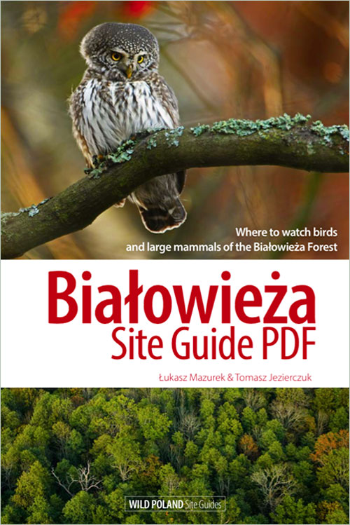 bialowieza-site-guide-pdf-cover-01
