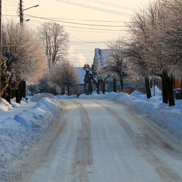Białowieża Village At Sunrise