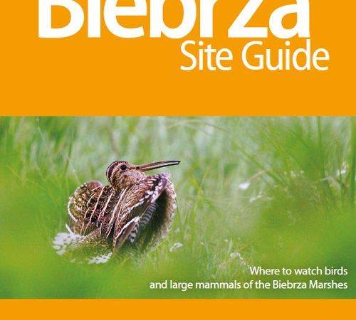 Biebrza Site Guide Released!