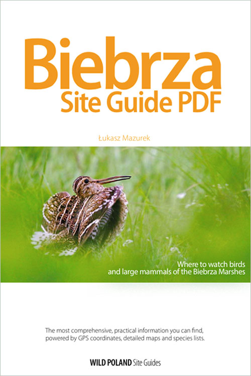 biebrza-site-guide-pdf-cover-01