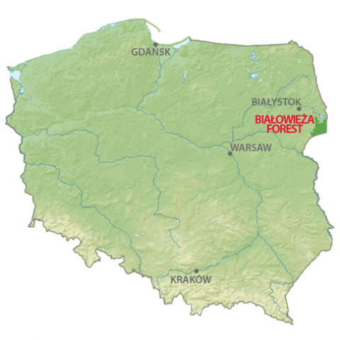map of belarus with Bialowieza Forest on Satellite Coverage Maps furthermore Playdate additionally Bialowieza Forest further Citymaps 1170 Minsk as well Sugokuii Luxury Events And Weddings.