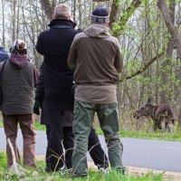 Wildpoland-early-spring-18-24-april-2015-photo-L-Mazurek-40