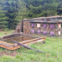 One of the hides with a drinking pool for birds