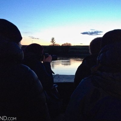 On The Boat Trip, Watching Beavers, May 2015