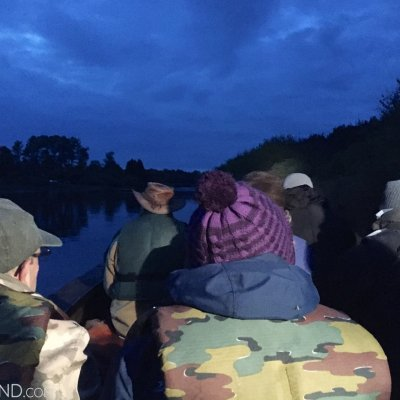 On The Boat Watching Beavers At Dusk In The Biebrza Marshes