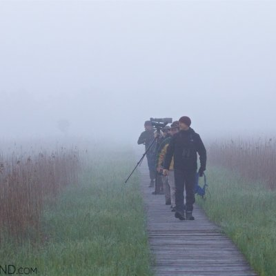 Biebrza-marshes-at-dawn-wildpoland-02 (1)