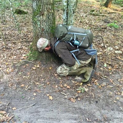 Tracking Wolves In The Białowieża Forest By Wild Poland Guide