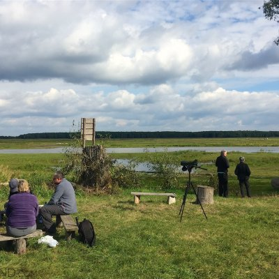 Lunch At A Riverside In The Biebrza National Park
