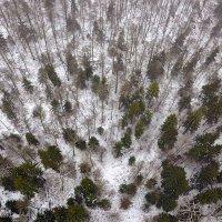 Biebrza Marshes Birdseye View In Winter By Robert Kalak