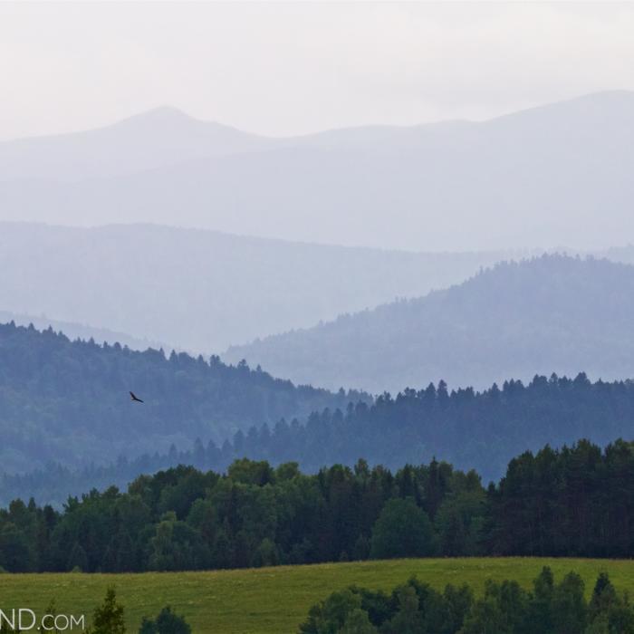 Eastern Carpathians In Summer.