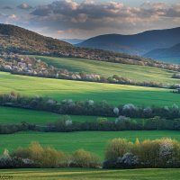 Spring In The Eastern Carpathians By Zenon Wojtas