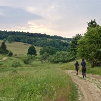 Tracking Mammals In The Eastern Carpathians With Wild Poland