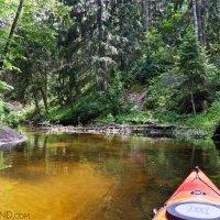 Kayaking on the Marycha River along the Lithuanian border