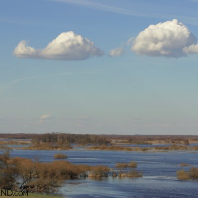Early Spring At Biebrza Marshes, Photo By Andrzej Petryna