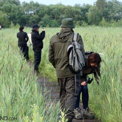 Biebrza Marshes With Wild Poland, Photo By Piotr Dębowski
