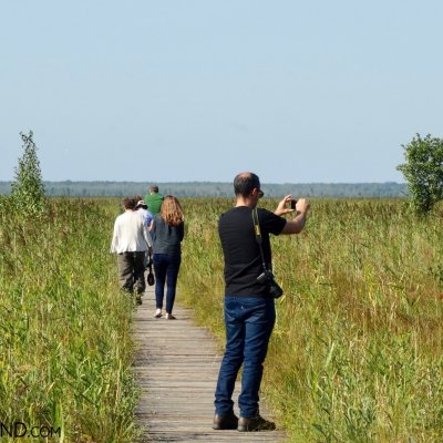 Visiting Biebrza Marshes, Photo Piotr Dębowski