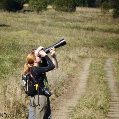 Birdwatching In The Bieszczady Mountains, Our Guided Eastern Carpathians Tour In September, Photo By Piotr Dębowski