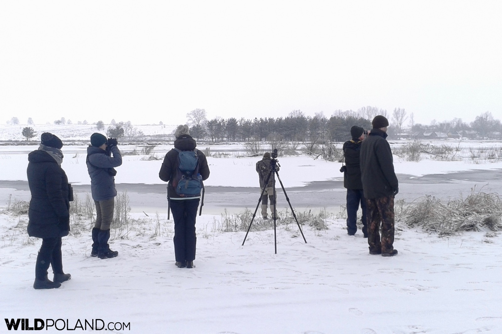 Our group looking out for wildlife at Biebrza Marshes, photo by Piotr Dębowski