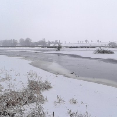 Winter Scenery Of Biebrza Marshes, Photo By Piotr Dębowski
