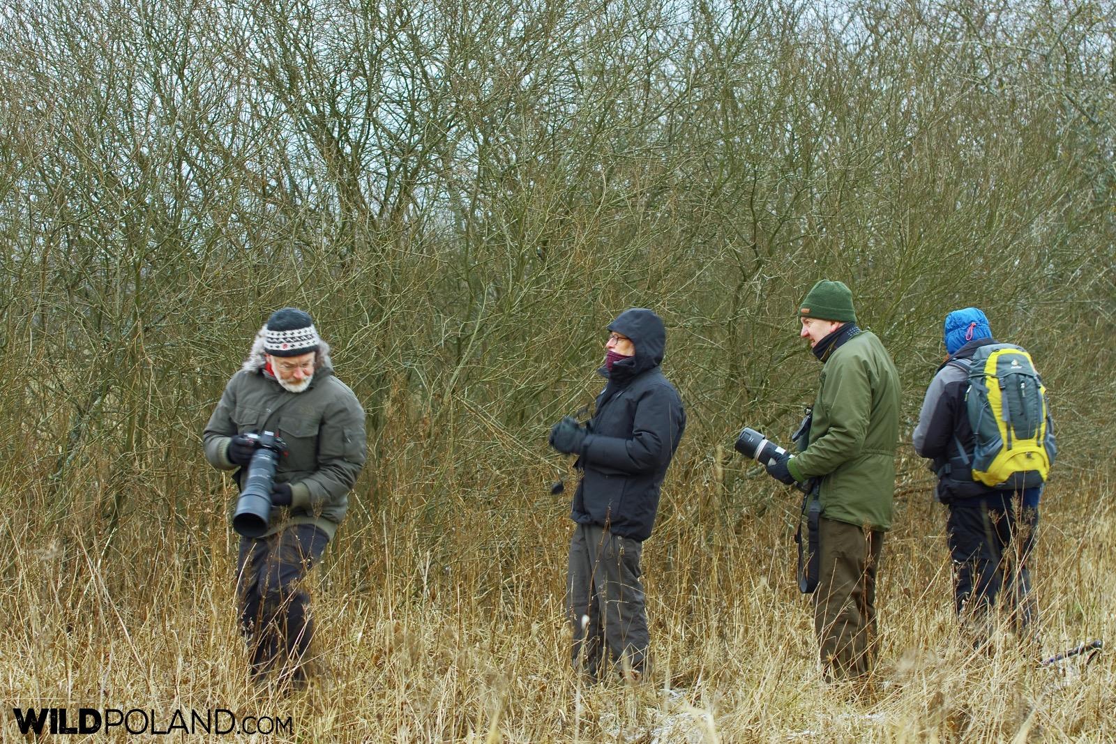 Wildlife watching with Wild Poland, Białowieża Forest, photo by Andrzej Petryna
