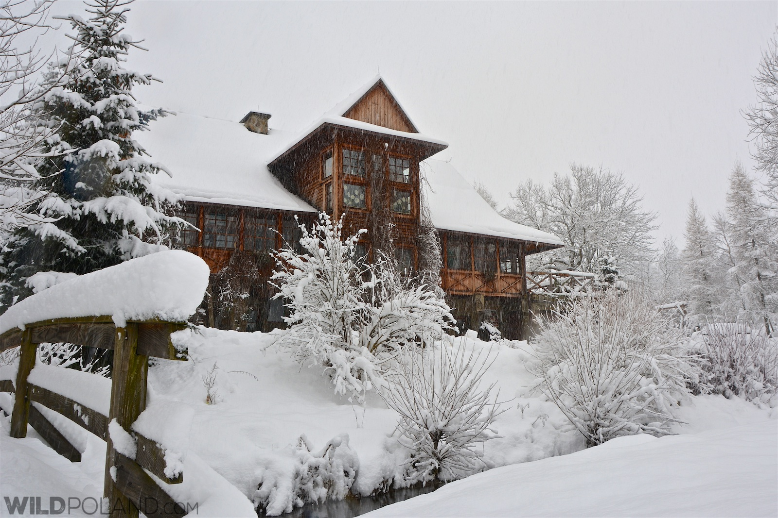 Our guesthouse in the snow early morning