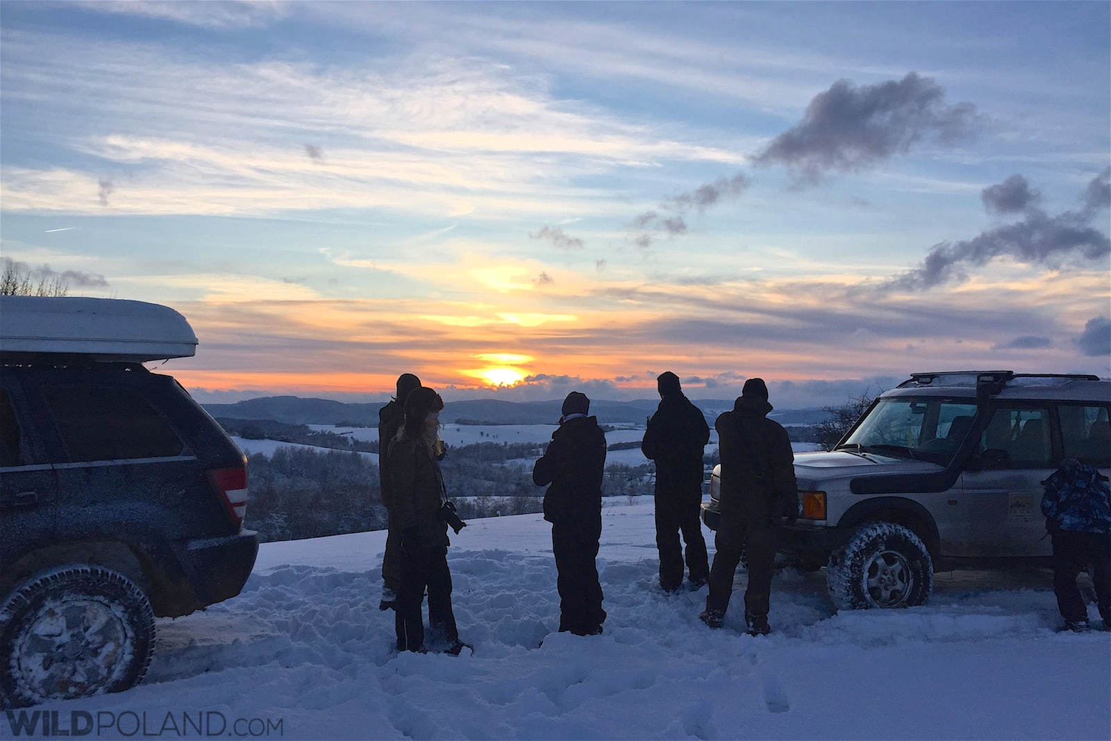 Searching for Wolves at sunset in Eastern Carpathians
