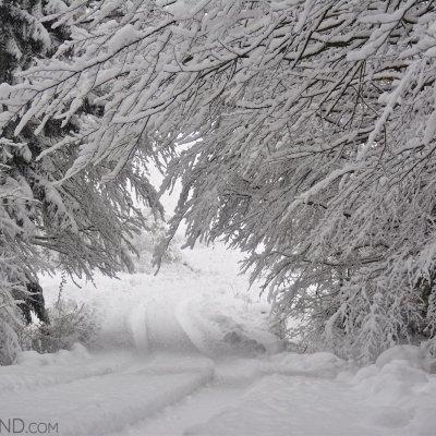 Snowy Ride Through The Carpathians By Gotz Rahne