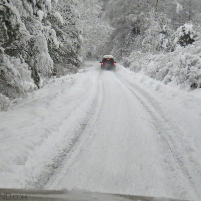 A Drive Through The Snowy Winter Carpathian Forest. Photo By Beatrice Van Nes.