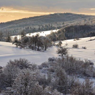 Sunny Morning In The Eastern Carpathians By Gotz Rahne