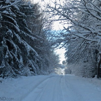 Driving Through The Snowy Carpathian Forest. Photo By Beatrice Van Nes