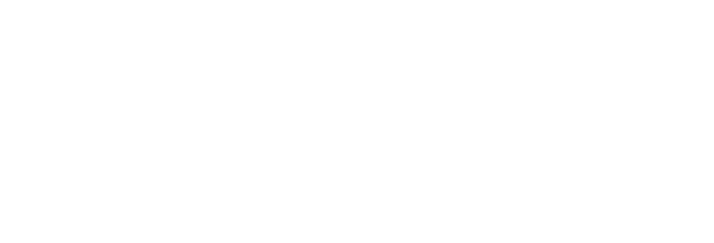 the-guardian-24