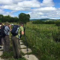 Birdwatching in the Bieszczady Mts