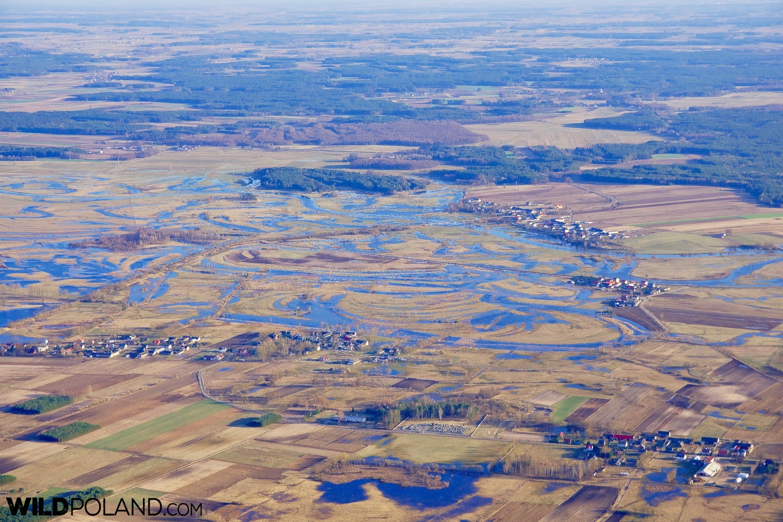 Biebrza Marshes seen from above during hot-air balloon flight, photo by Andrzej Petryna