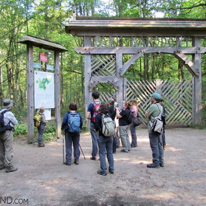 The Historical Wooden Gate Of The Strictly Protected Area Of The Bialowieza NP