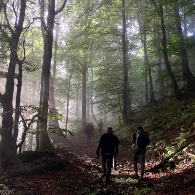 Hiking The Primeval Forests Of The Bieszczady Mts, Eastern Carpathians
