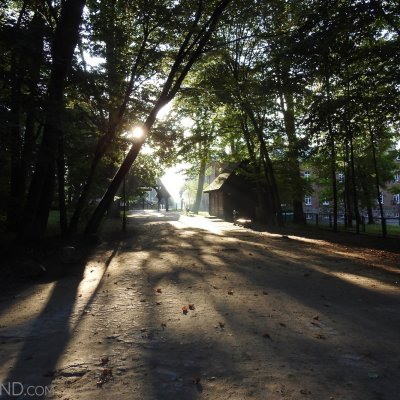Sunny Morning At The Białowieża Palace Park, Photo By Marta Świtała