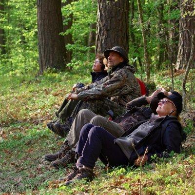 Break Time, Białowieża Forest, Photo By Andrzej Petryna
