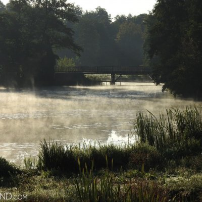 The Morning Mist At Narewka River, Photo By Marta Świtała