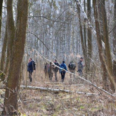 Different Forest Habitats At The Biebrza Marshes, Photo By Michał Skierczyński