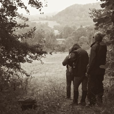 On A Lookout For Mammals In The Bieszczady Mountains, Eastern Carpathians