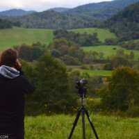 Searching For Mammals In The Bieszczady Mts, Eastern Carpathians