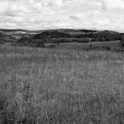 Primeval Landscape Of The Bieszczady Mountains, Eastern Carpathians
