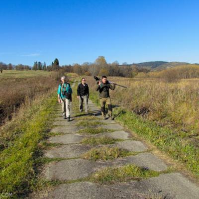 Mammal Watching Group In The Bieszczady Mts, Eastern Carpathians