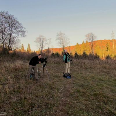 Looking For Wolves And Bears In The Bieszczady Mts