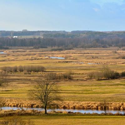 Biebrza Marshes Vast Landscape