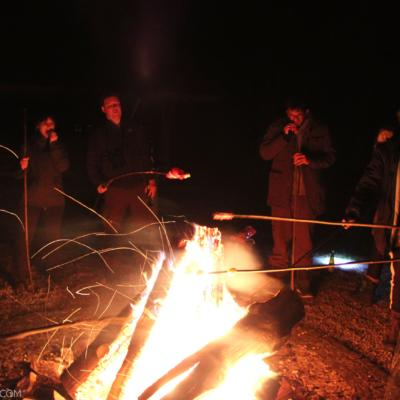 Traditional Campfire At The End Of The Winter Wildlife Festival 2020 In The Białowieża Forest